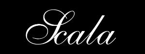 WP LogoBIG